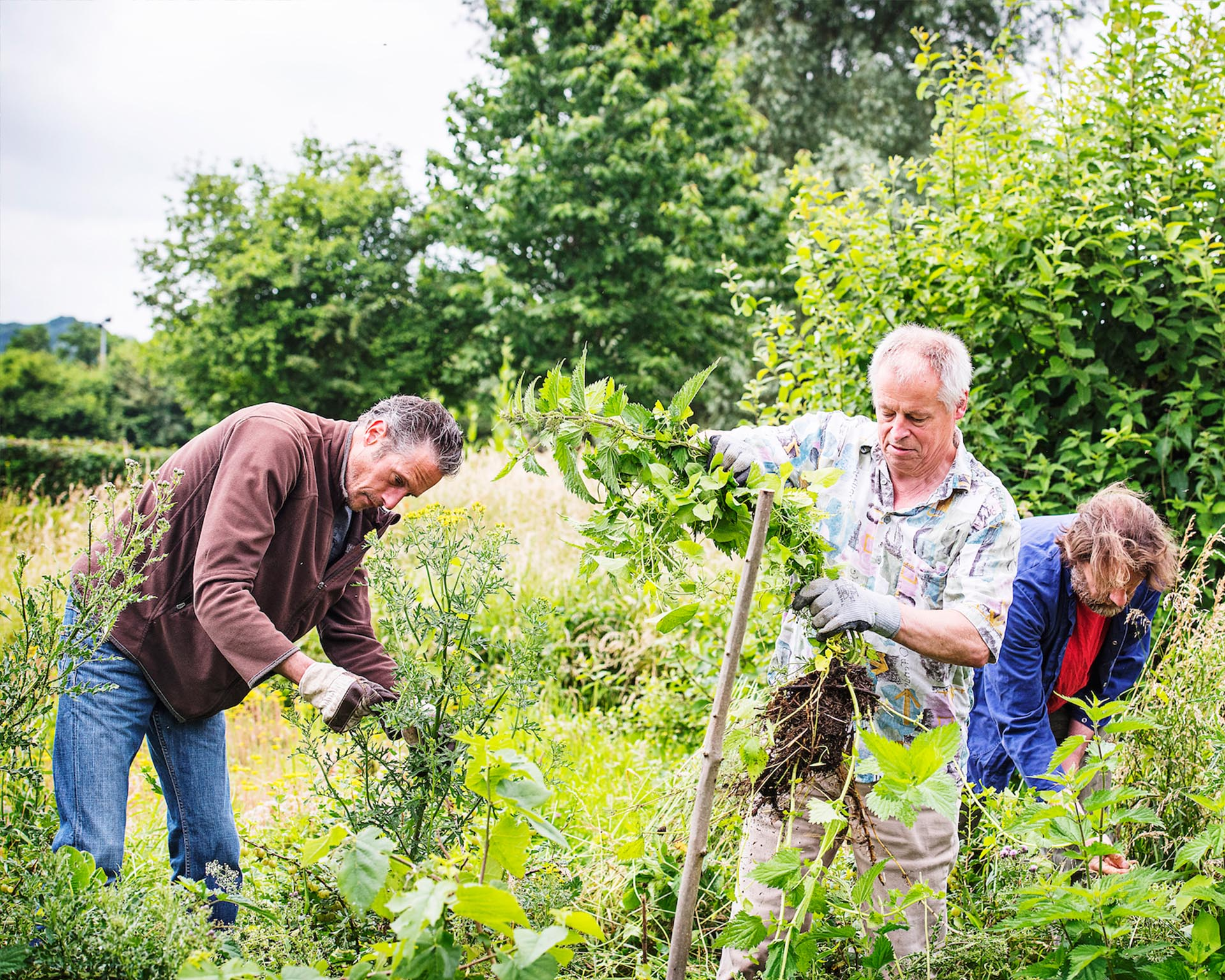 Vrijwilligers van CNME Maastricht en regio Centrum voor Natuur- en Milieueducatie werken in het park