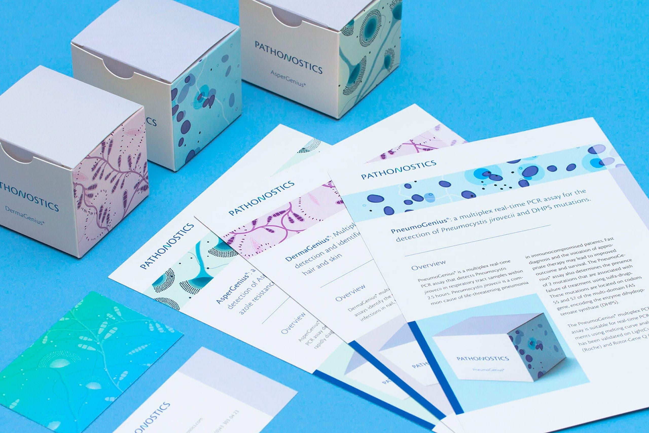 Huisstijlelementen, doosjes, packaging, flyer, leaflet, visitekaartje van Pathonostics ontworpen door Saus