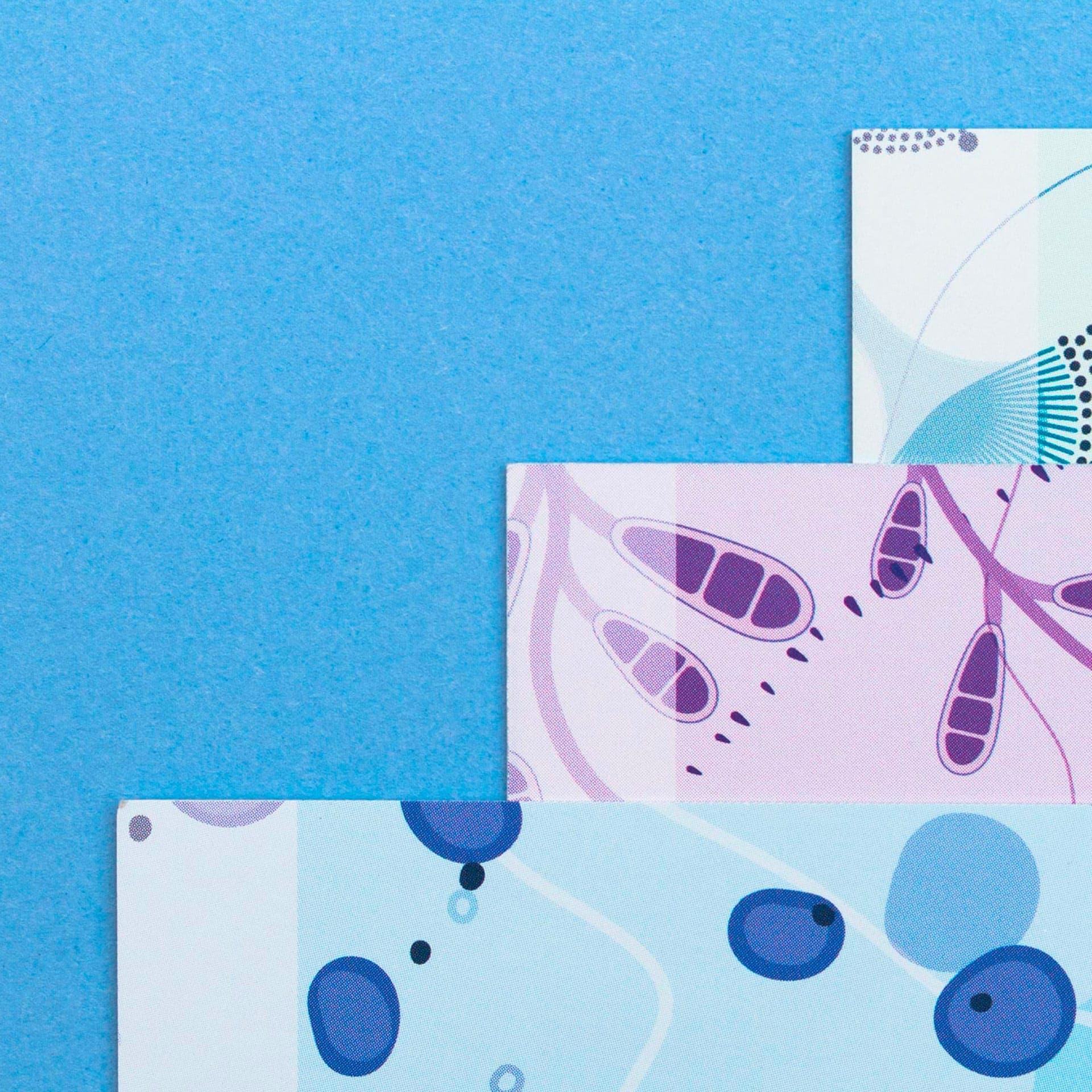 Huisstijlelementen, doosjes, packaging, flyer, leaflet, visitekaartje van Pathonostics ontworpen door Saus. Illustratie van cellen, schimmels en gisten
